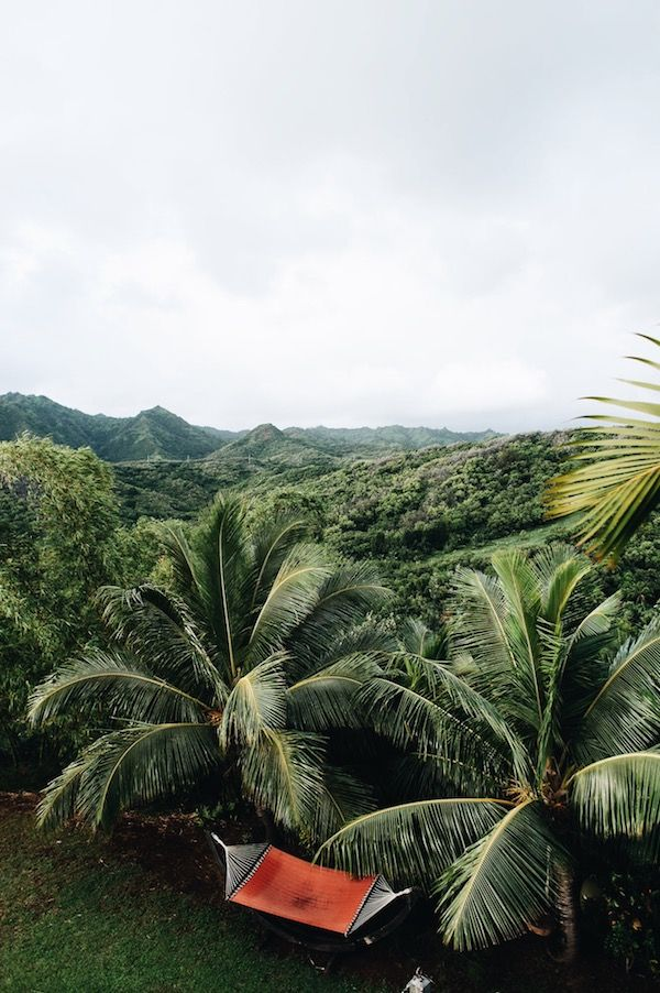 The Palmwood Guesthouse in Kauai