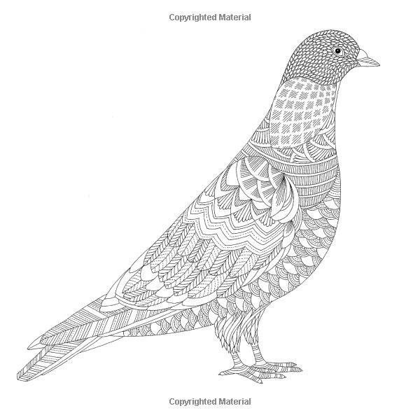 57 Best Coloring Pages