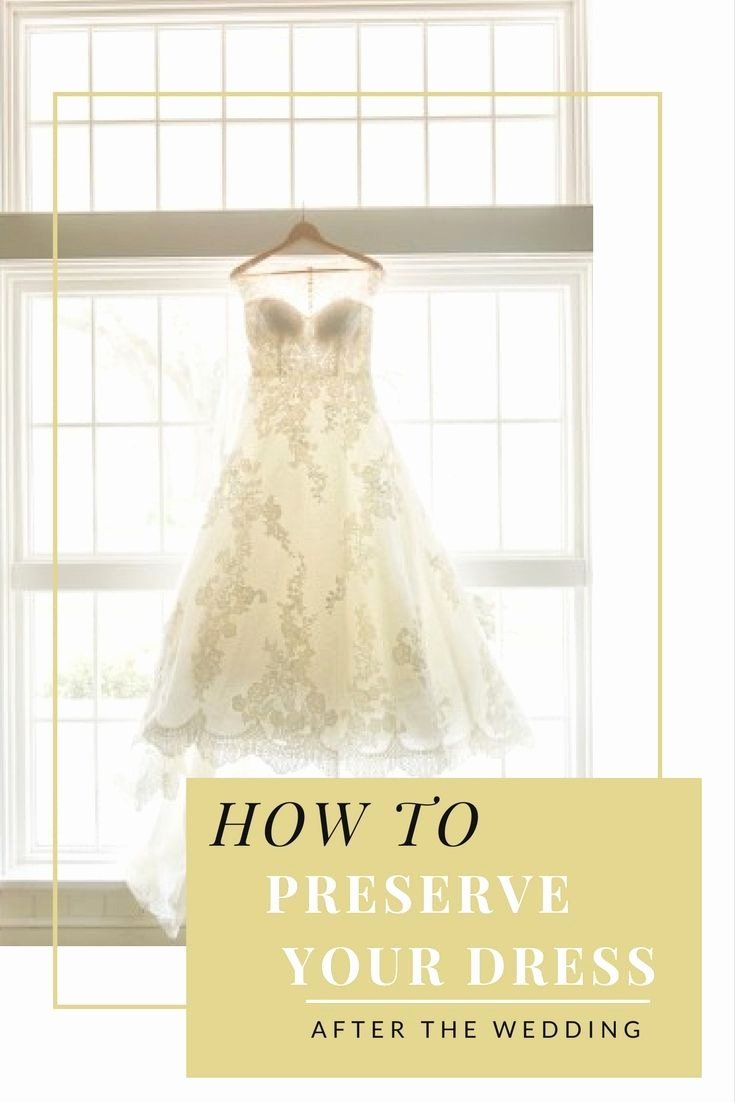 Preserving Wedding Dress In Shadow Box Luxury Dresses Wedding Gown Preservation Pany In 2020 Wedding Dress Preservation Wedding Gown Preservation Wedding Dresses