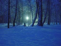 : Photos, Blue Snow, Winter Wonderland, Winter Night, Hd Wallpapers, Winter Scenes, Snow Scenes