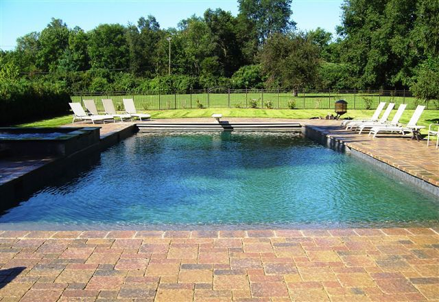a beautiful gunite pool inground swimming pool designs