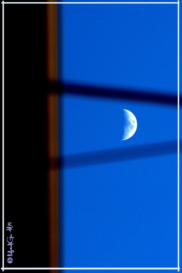 the moon in the trap...
