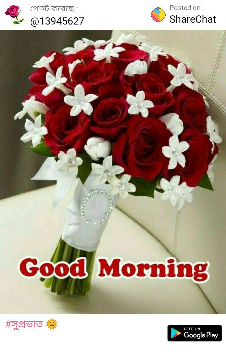 Pin By Subrata Bhaduri On Sharechat Good Morning Roses Good Morning Flowers Morning Rose