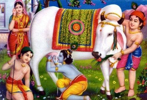 Sri Krishna @Very funny
