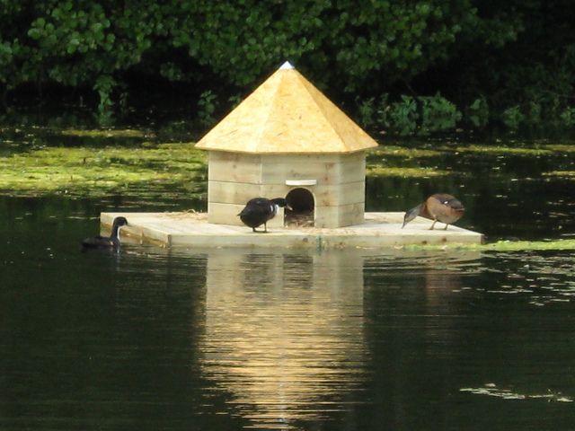 Floating Duck House | Floating Duck House | Flickr - Photo Sharing!
