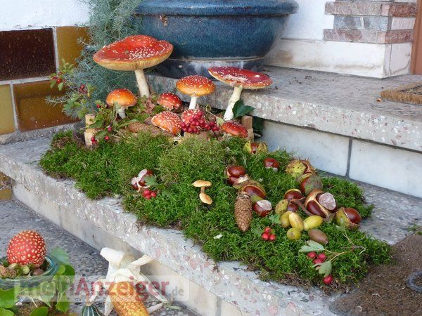 decorate stairs autumn | picture gallery, nature, autumn, water, mushrooms, meadow, …   – Herbst