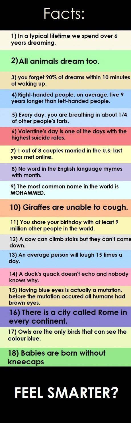 Fun Facts!