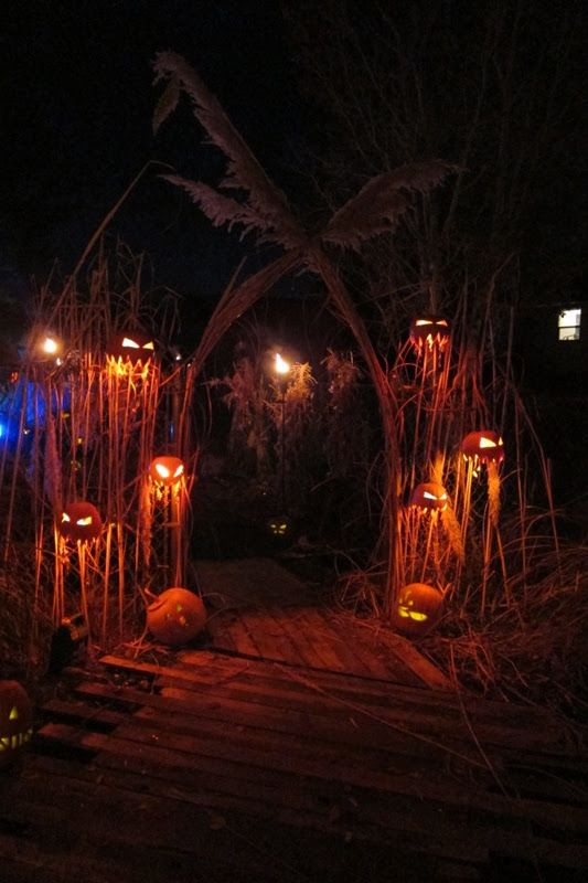 different way to stage pumpkins halloween dcor ideas - Halloween Decorated House