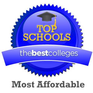Top Online College Degree Programs Would you do not have the money for college? Have you been never near sufficient to go to teaching programs several times per week?