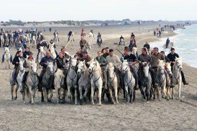 feria camargue, fete saintes maries de la mer, taureau camargue, chevaux camargue