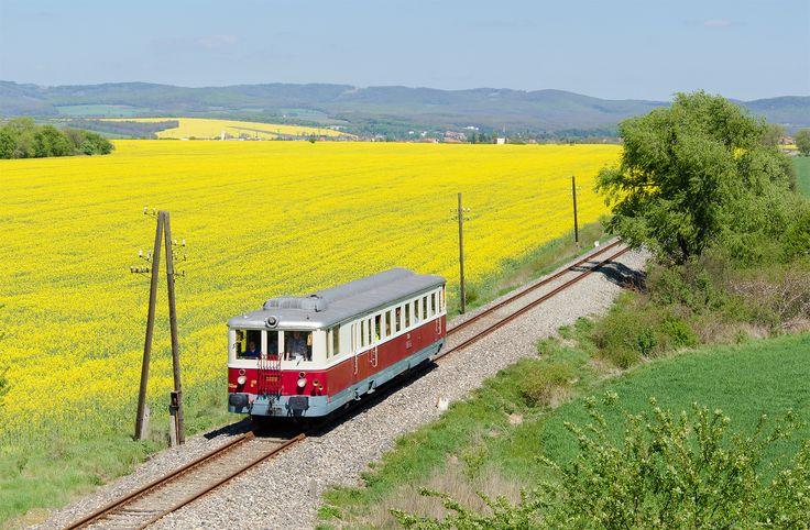 https://flic.kr/p/Tmrbok   Kredenc v repke   M262.007 ako mimoriadny vlak zo Zlatých Moraviec do Kozároviec brúsi hrdzu na takmer zabudnutej trati.