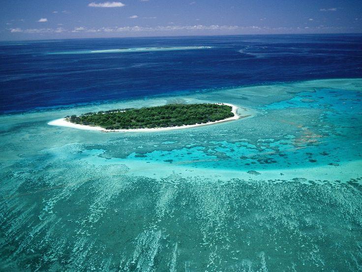 great/barrier/reef - Google Search