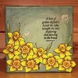 February 2017 Monthly Special – Daffs & Bells :: HOBBY ART CLEAR SETS :: Clear S… – Hobby Art