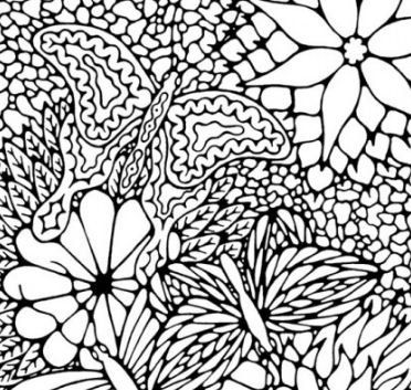 winged adventures butterfly coloring page for adults