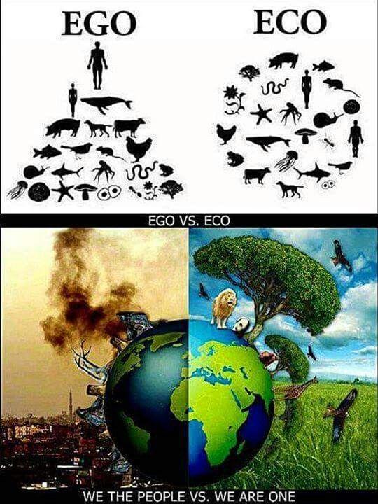 Lo que nuestro ego le hizo al planeta