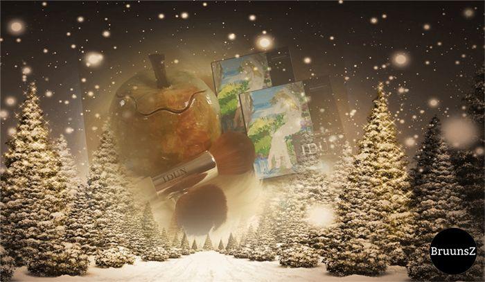 www.BruunsZ.dk har en spændende jule konkurrence indtil d.20/12-2016 på deres facebook side. Skynd dig ind og deltage. Du kan også benytte de gode tilbud på webshoppen.