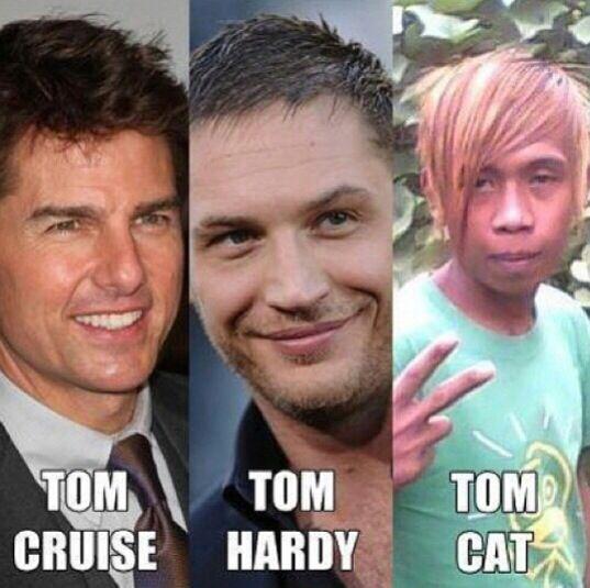 Macam-macam Tom