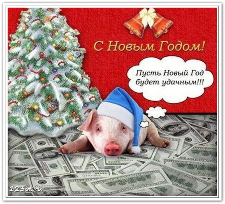 Поздравлениями, новогодние прикольные открытки с годом свиньи