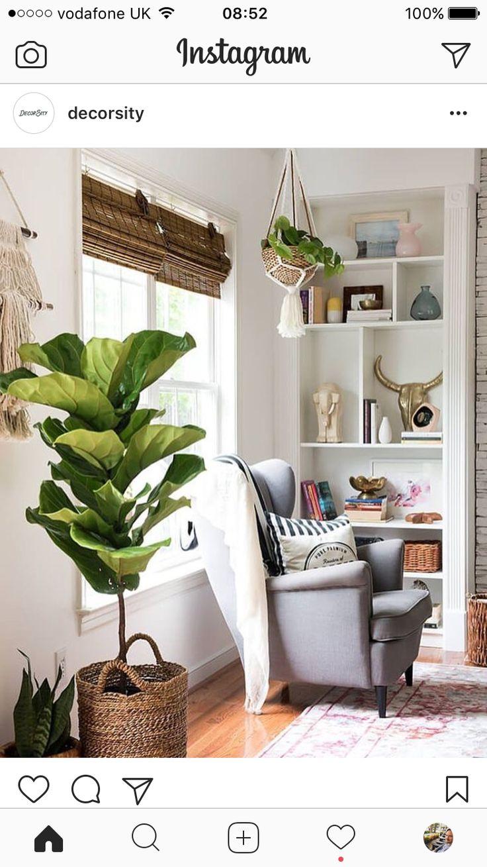 inside plants decoration - 690×1034