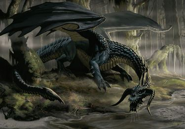 Black dragons, also known as skull dragons, are far and away the most vile tempered and cruel of...