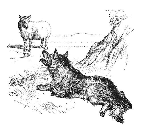 Sheep, wolves, and sheepdogs: disentangling metaphor and reality