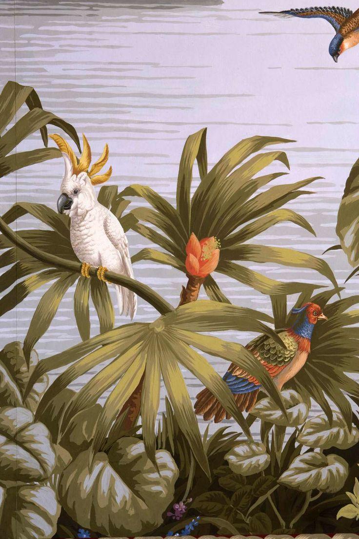 Tapete mit papagei wandbild tapete muster tapete 03 le for Tapeten katalog