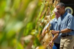 AP: Obama admin's corn-ethanol policies are pretty terrible for the environment « Hot Air