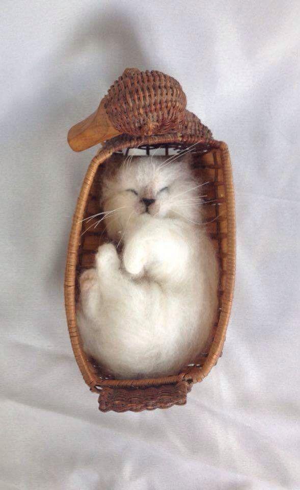 A personal favorite from my Etsy shop https://www.etsy.com/ca/listing/240126144/needle-felted-birman-kitten-cat-memorial