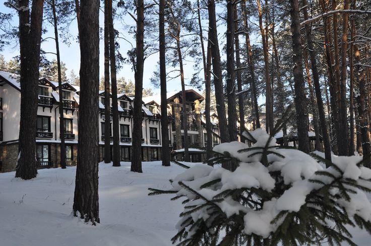 ШишкiNN СПА Отель - Галерея отеля зимой