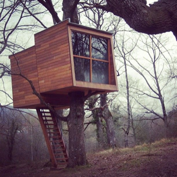 15 Ridiculously cool tree houses / The Green Life <3