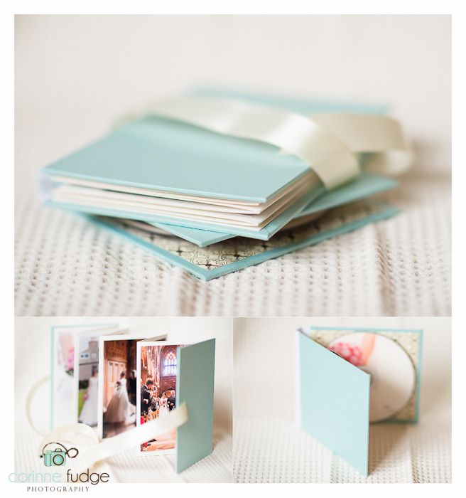 Nauli products in action! CD case and accordion brag book in mint and brown…