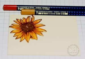 Gina K Designs Stately Flowers 5 stamp set by Melanie Muenchinger, colored with Faber-Castell's Art Grip Aquarelle Watercolor Pencils and Gelatos