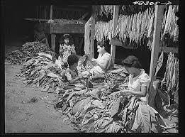 Image result for Coamo, Puerto Rico siglo 19