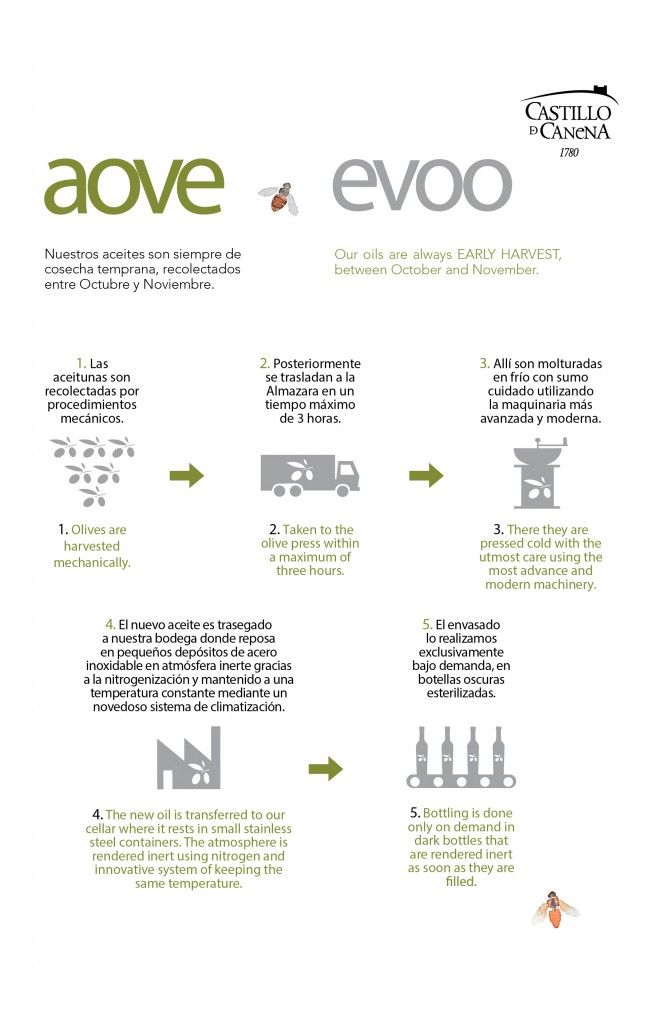 Así se produce nuestro aceite de oliva virgen extra... This is how we produce our extra virgin olive oil