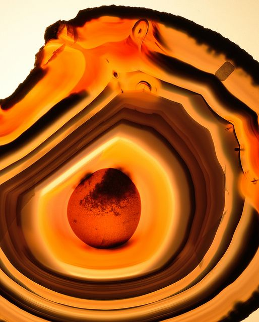 Agate slice by Wood's Stoneworks and Photo Factory, via Flickr shot on ligt table
