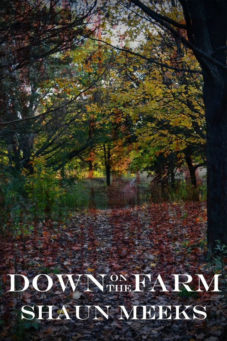 New 4 star review from Frank Michaels Errington's Horrible Book Reviews: Down On the Farm - by Shaun Meeks