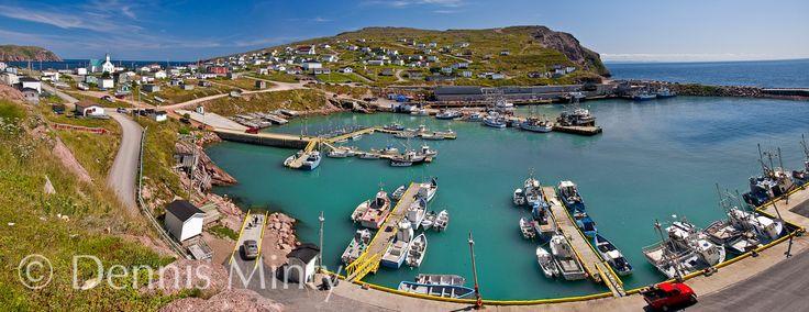Small Craft Harbour, Bay de Verde, Conception Bay, Newfoundland, Canada