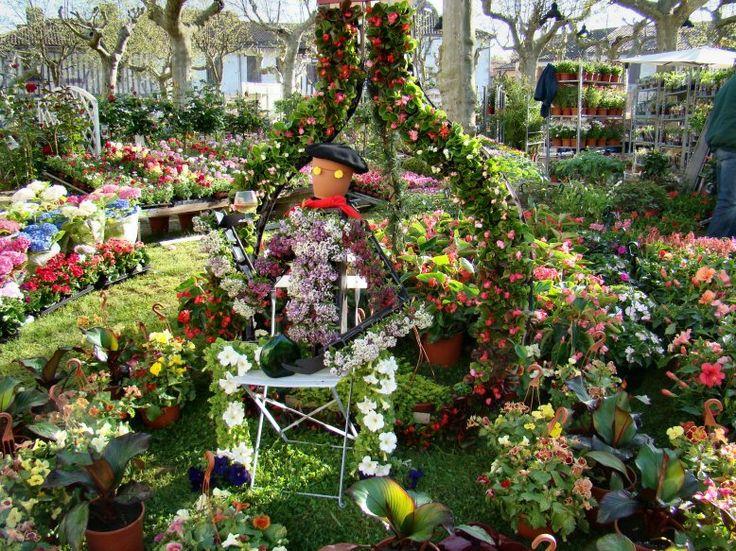 Chaque année, pendant le dernier week-end d'avril, le village rond de Fourcès, dans le #Gers, accueille son très célèbre #marché aux #fleurs. Plus de 75 exposants sont présents !  #Fleur #Plante #Plantes #horticulture #TourismeGers