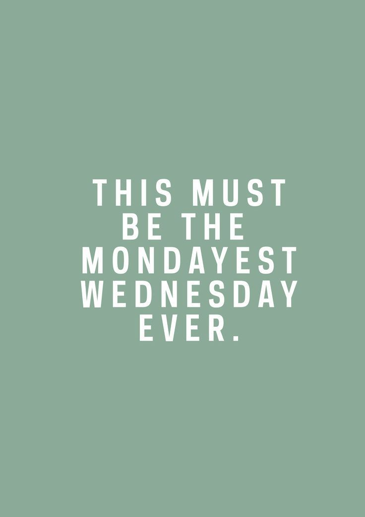 81 best Weekday Quotes That are Funny! images on Pinterest
