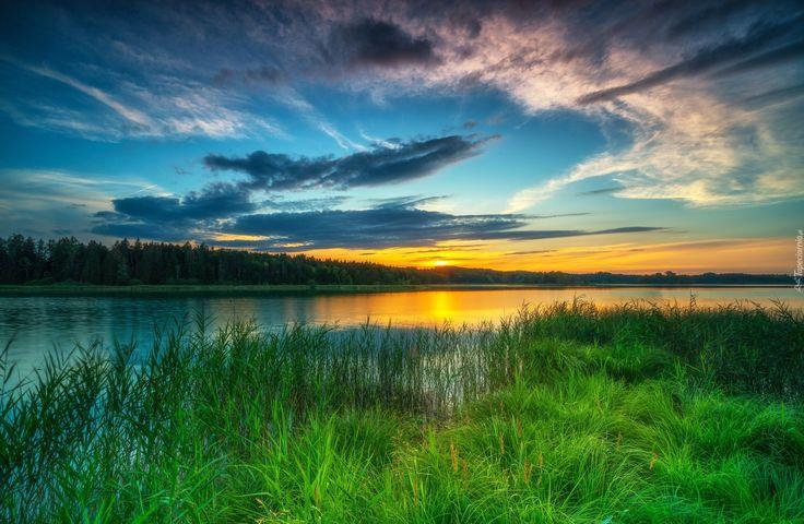 Rzeka, Zachód słońca, Trawa, Drzewa
