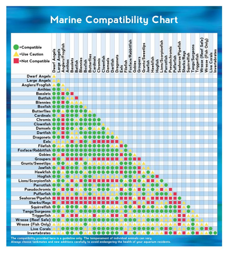 Marine compatibility chart fish for Saltwater fish compatibility chart