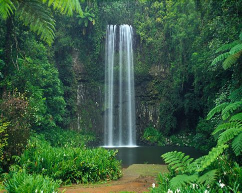 Waterfalls near Brisbane.