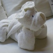 Towel Origami. http://foldingmagic.com I like this one.