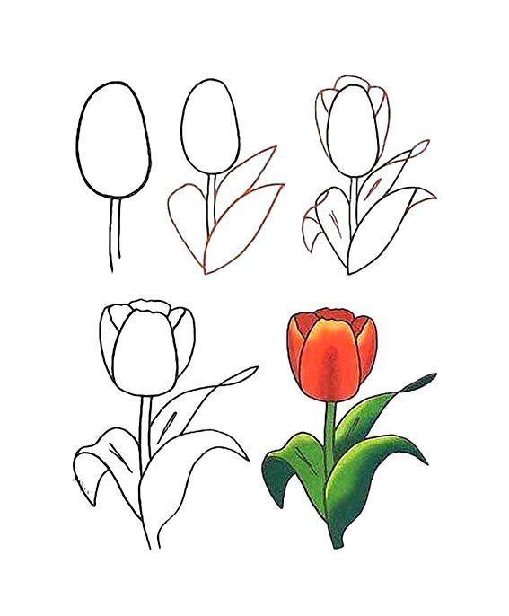 Zajka Razvivajka Vk En 2020 Como Dibujar Flores Flores Faciles De Dibujar Dibujos De Flores