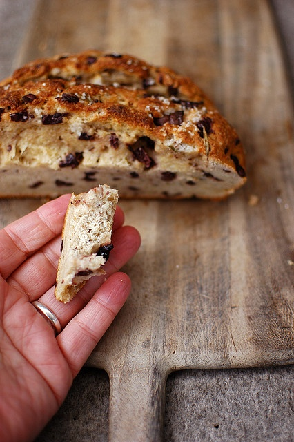 """Gluten free based on """"bread in 5 min. a day""""."""