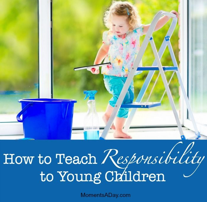Games That Teach Responsibility | Earning Daisy Petals and ...