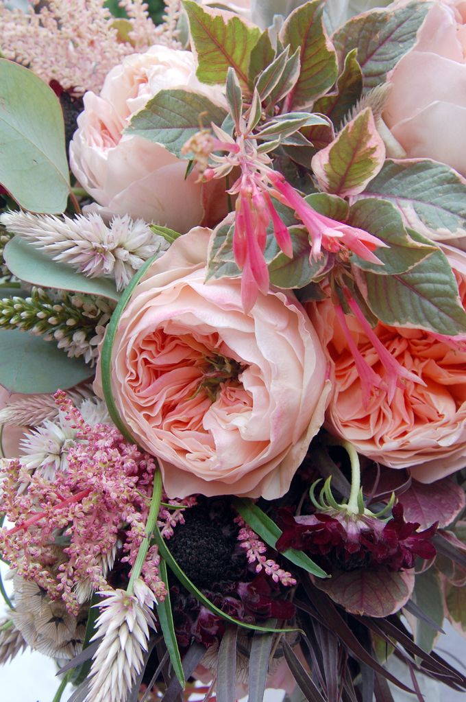 BRDIGET VIZOSO Juliette David Austin Garden roses surrounded by (this year's favored foliage) Dusty Miller, feathery dark Agonis leaves, Celosia Specata, Black Scabbiossa blossoms with their pods, Astilbe, Fuschias and Seeded Eucalyptus with foliage.