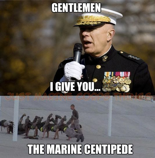 dating a marine meme Thechive brings you the funniest, the most outrageous, and the best photos and videos you will never be bored at school or work again ever.