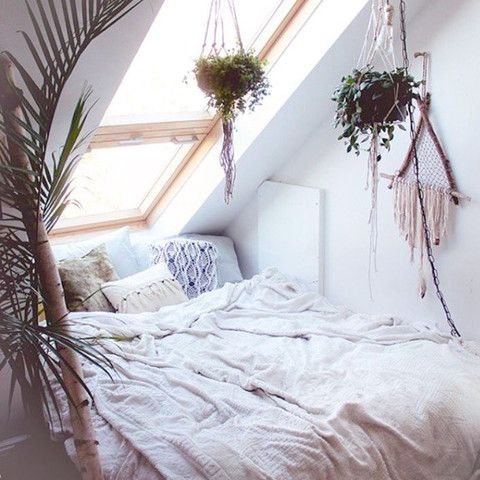 Green plants in the bedroom   A weave, a plant, a window. Combine all three incessantly.