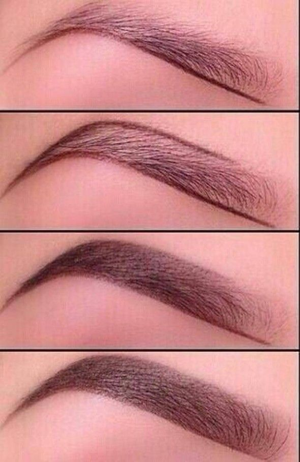 How To Apply Eyebrow Pencil To Thin Eyebrows